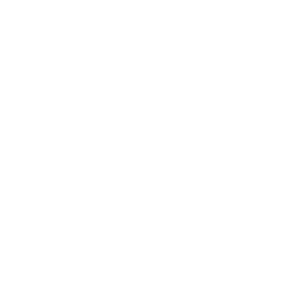 WM Leilões